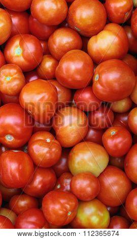 Pile Of Fresh Red And Orange Tomatos. Background Image.