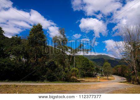Road In Doi Inthanon