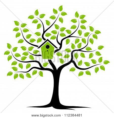 Tree With Nesting Bird Box
