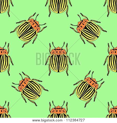 Seamless Pattern With Colorado Potato Beetle. Leptinotarsa Decemlineata.   Colorado Beetle.  Hand-dr
