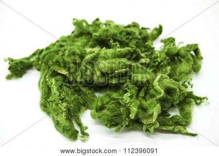 Green piece of Australian sheep wool Merino breed close-up on a white background.