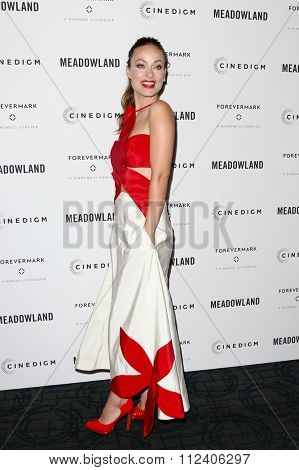 NEW YORK-OCT 11: Actress Olivia Wilde attends the premiere of 'Meadowland' at Sunshine Landmark on October 11, 2015 in New York City.