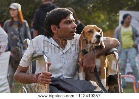 A Beagle Dog Sitting With Its Disabled Owner