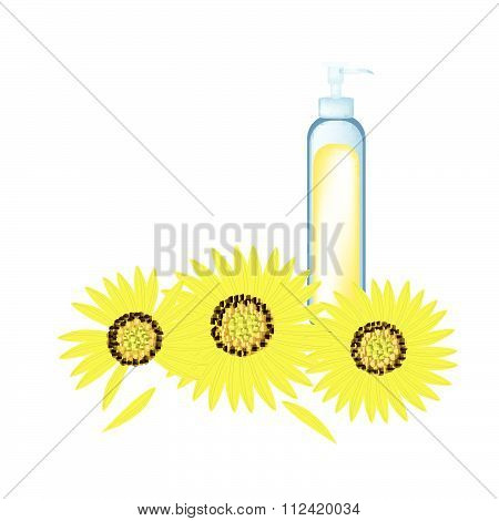 Glass Bottle With Sunflower Oil And Sunflower