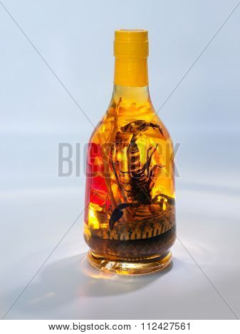 Snake And Scorpion In A Bottle