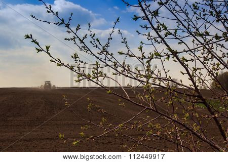 Blue Sky Clouds Above Ploughed Field Through Leaf-buds Branch