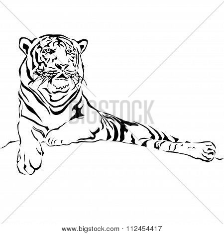 Tiger sitting, black and white, vector