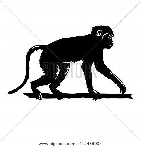 Monkey Black Silhouette On White Background Isolated. Hand Drawn Silhouette Of Funny Animal Chimpanz