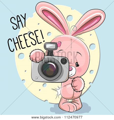Rabbit With A Camera