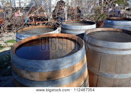 old wooden wine barrels in the backyard of a tavern after the rain