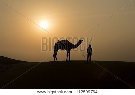 Silhoutte Of Camel Boy Crossing In The Thar Desert.
