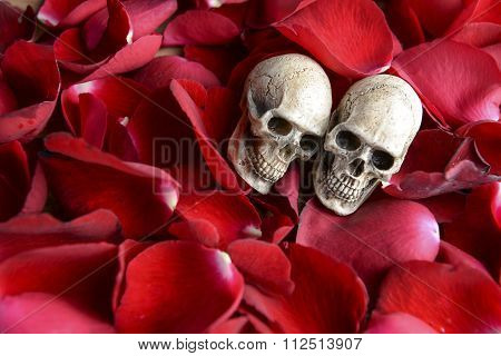 Still Life Photo With Skull And Rose To The Concept Of Eternal Love.