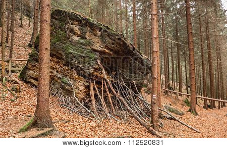 Rock Formation In Bohemian Switzerland