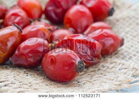 Drying Wild Rose Hip Fruit
