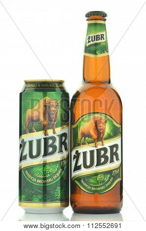 Zubr lager beer isolated on white background