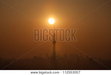 Tokyo sky tree and sun