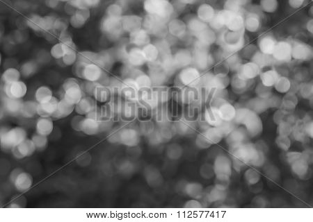 Abstract Circular Bokeh On Black And White Background
