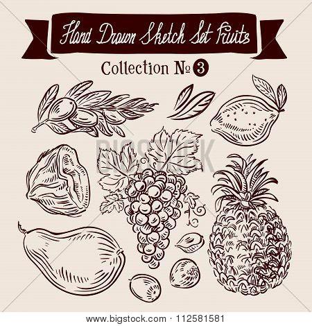 Hand drawn sketch set fruit. Vector illustration