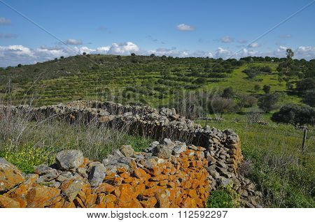 Antique Stone Wall Of An Old Farm