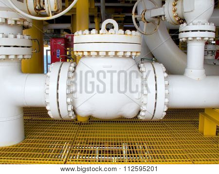 Check Valve Pump In Petrochemical Plant