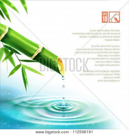 Bamboo Fountain. Vector Illustration, Eps10.