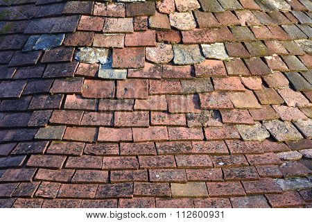 Terracotta Roof Tiles In Low Sun