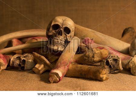 Still Life With Skulls And Bones