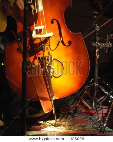 Upright Bass Fiddle