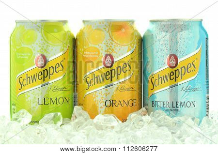 Cans of Schweppes drink on ice cubes