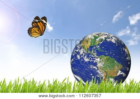 Butterfly And Planet Earth On Beautiful Green Grass