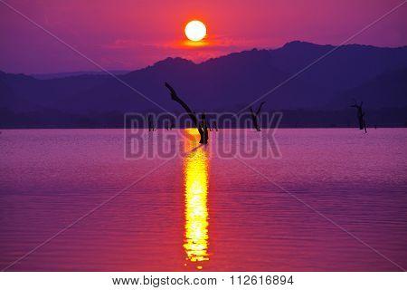 Fishing boat on lake, Sri Lanka