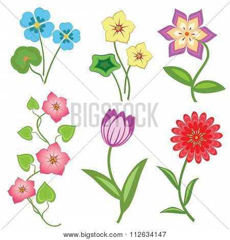 Flower set on white background. Camomile, orchid, chrysanthemum, daisy, tulip, bindweed. Colored flo