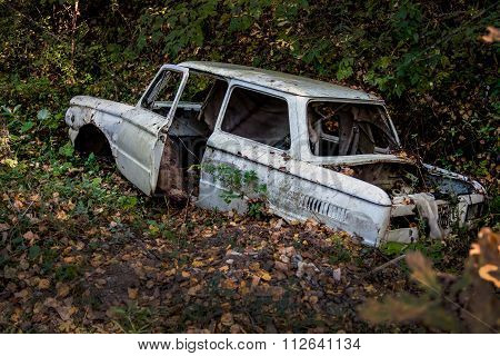 Old broken car in a forest ravine lies