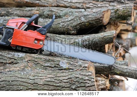 Chainsaw And Tree