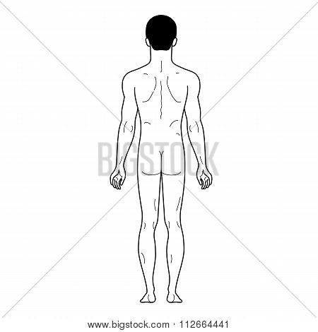 Fashion Man Outlined Linear Template Full Length Figure Silhouette