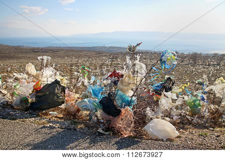 Discarded Plastic Bags