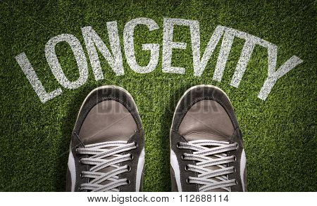 Top View of Sneakers on the grass with the text: Longevity