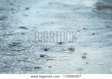 Rain drops in a puddle