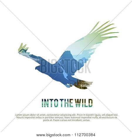 Hawk. Vector illustration.