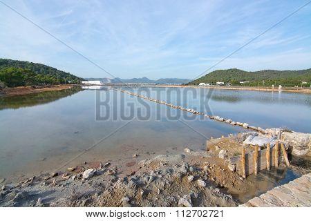 Ses Salines Landscape View