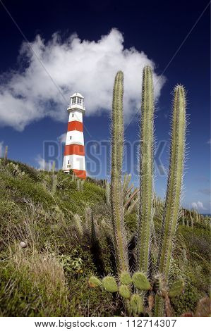 South America Venezuela Isla Margatita Pedro Gonzalez Lighttower