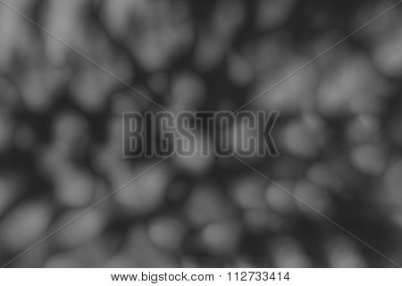 Defocused Abstract Background Of The Lights In Black And White