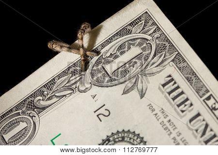 Danger Hide Behind Money - Spider Legs Criss-cross Over Bank Note