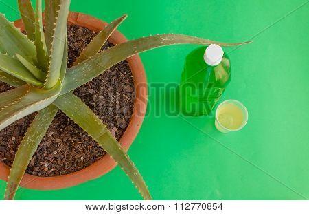 A Bottle Of Aloe Juice
