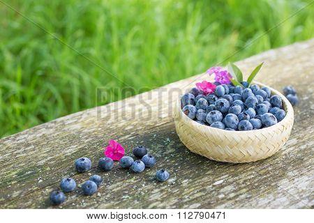 Small porringer with blueberries