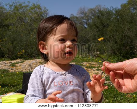Sweet Toddler Girl Getting A Flower