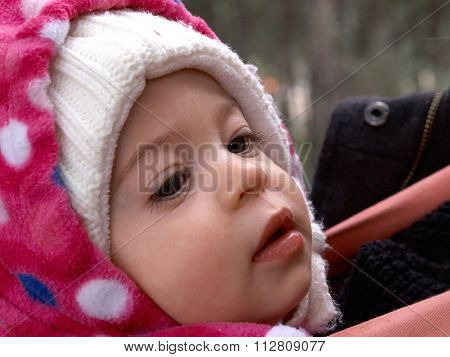 Cute Little Toddler Girl In Beautiful Warm Hat