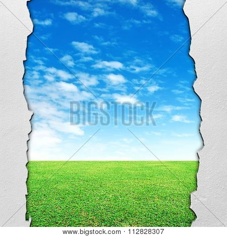 meadow background with crack wall