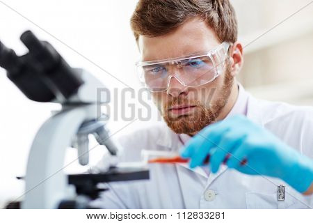 Chemist studying new substance in scientific lab