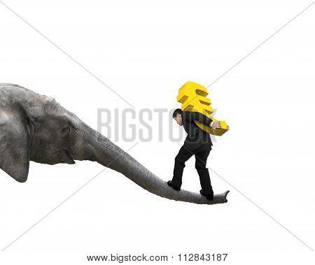Businessman Carrying Euro Sign Balancing On Elephant Trunk